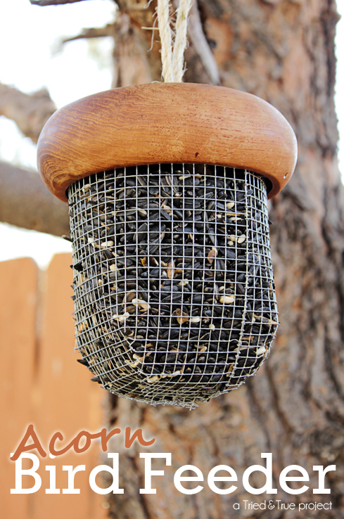 acornbirdfeeder01sm