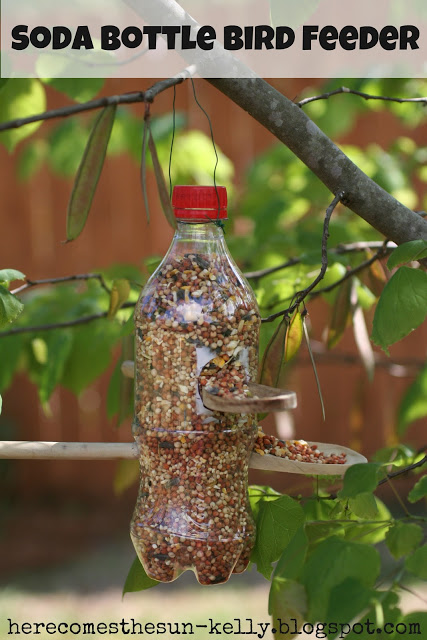 bird feeder5