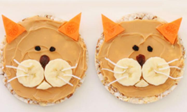 kitty-cat-476.jpg-20150309011256-q75,dx720y432u1r1gg,c--