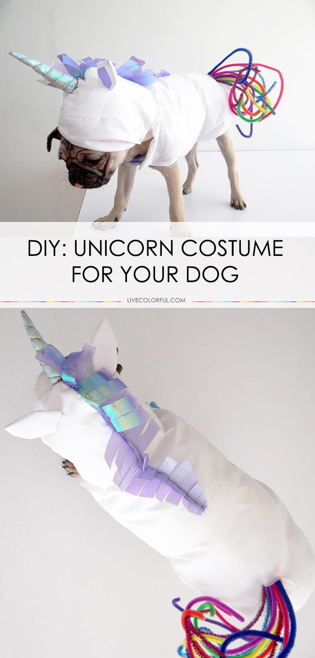 unicorncostume_livecolorful