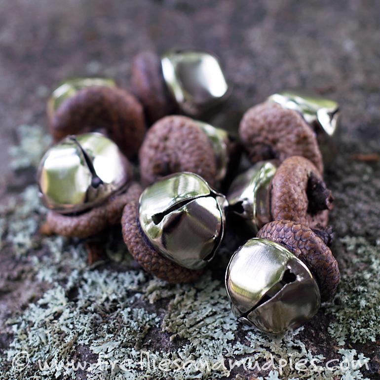acorn-bells-social-media