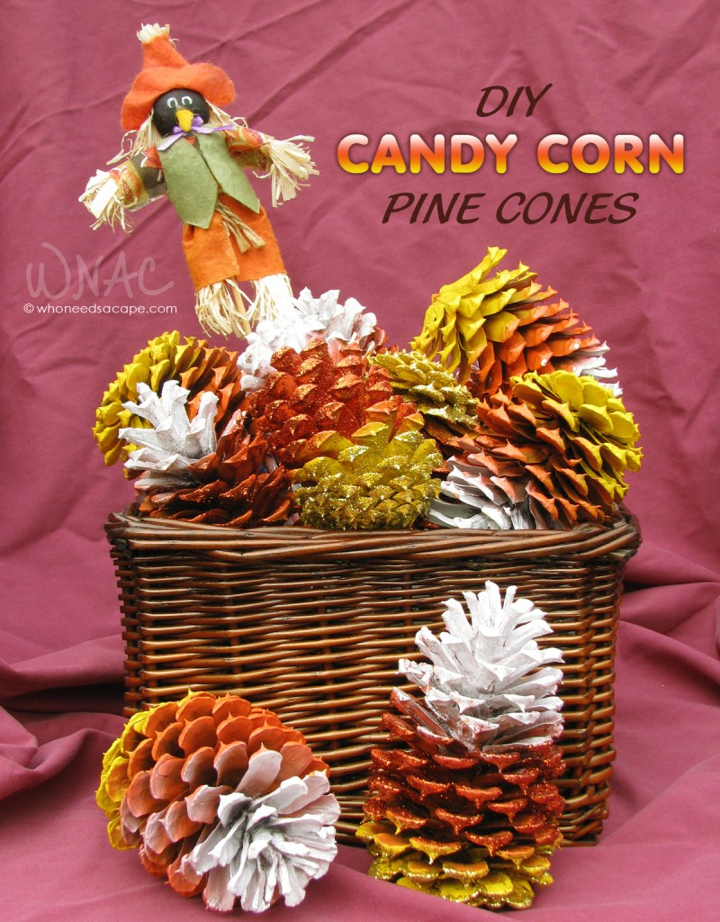 candy_corn_pinecones_v_aug2014