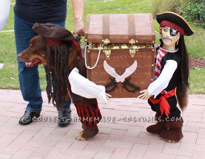 capt-jack-sparrow-and-his-pirate-with-their-booty-47043-800x624