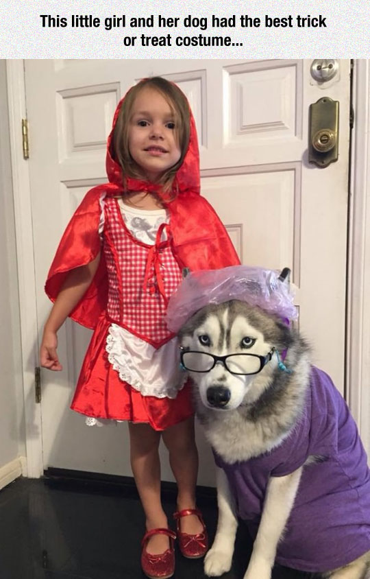 funny-red-riding-hood-girl-costume