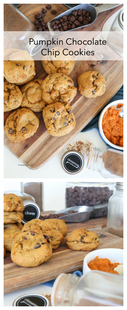 pumpkin Chocolate chip cookies pin