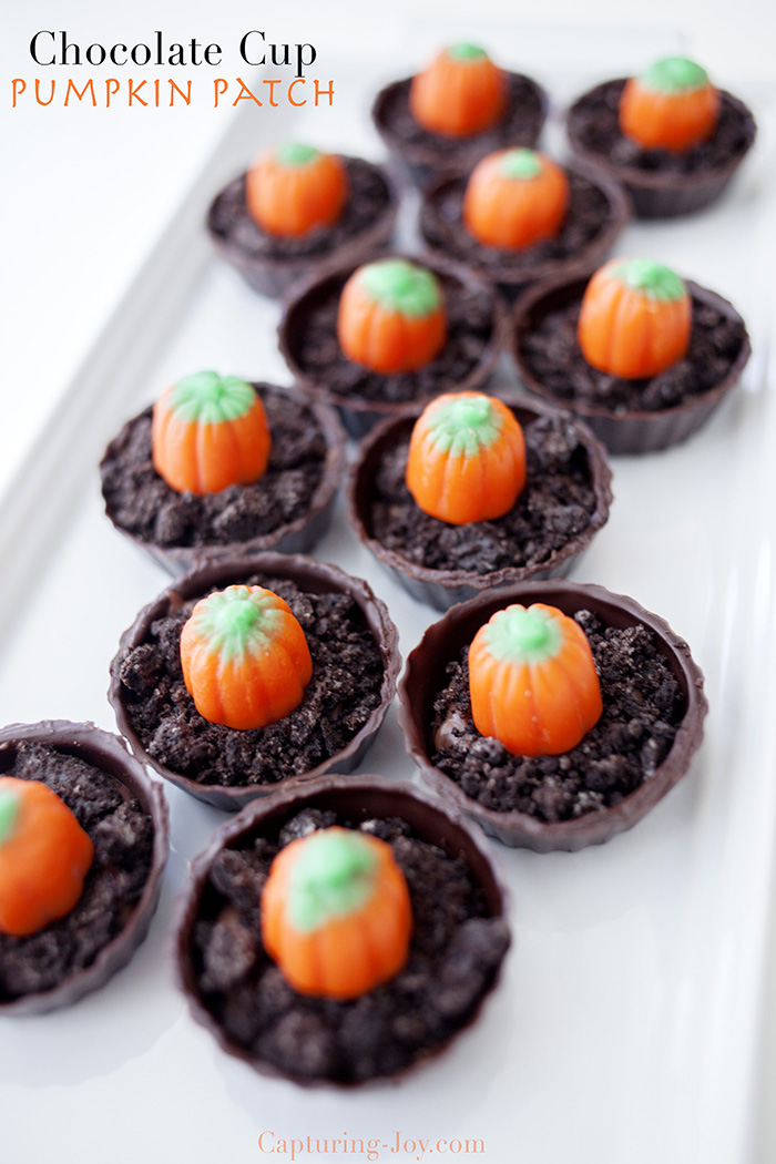 Chocolate Cup Pumpkin Patch Dessert