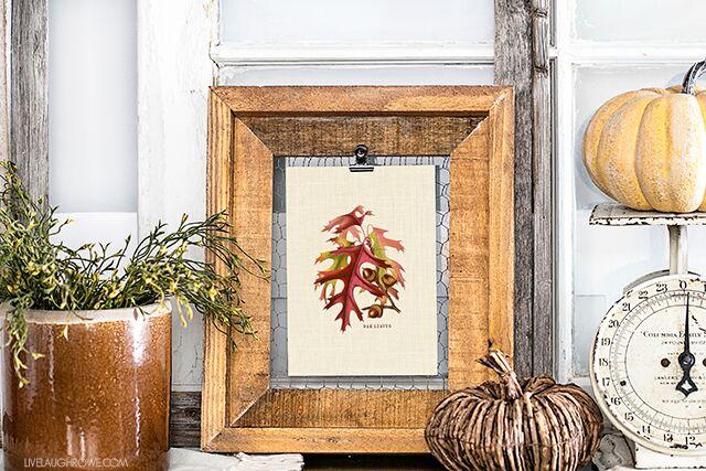 acorns-fall-printable