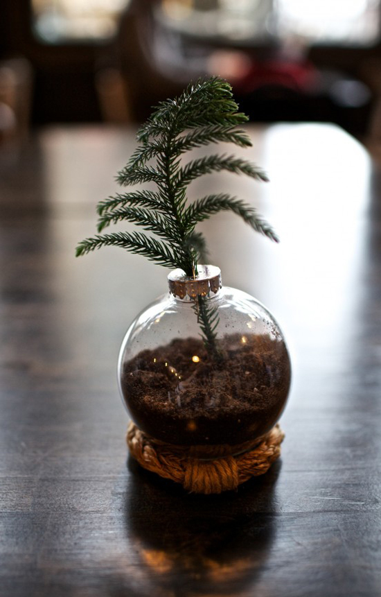 my-paradissi-real-mini-tabletop-christmas-tree-diy-gimme-some-style