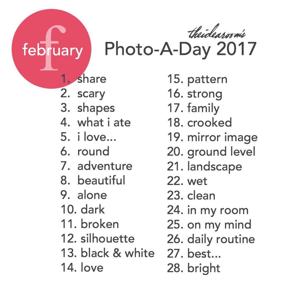 february photoaday 2017