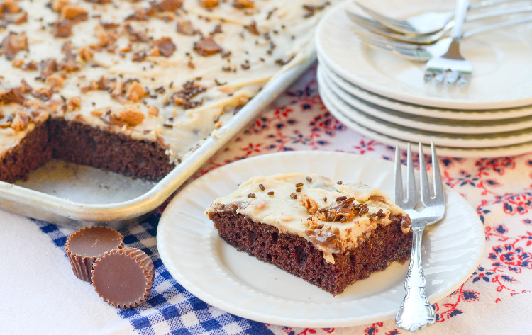 peanut-butter-cup-sheet-cake-recipe-chocolate-cake