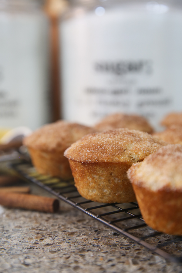 Snickerdoodle-Donut-Muffins-Recipe