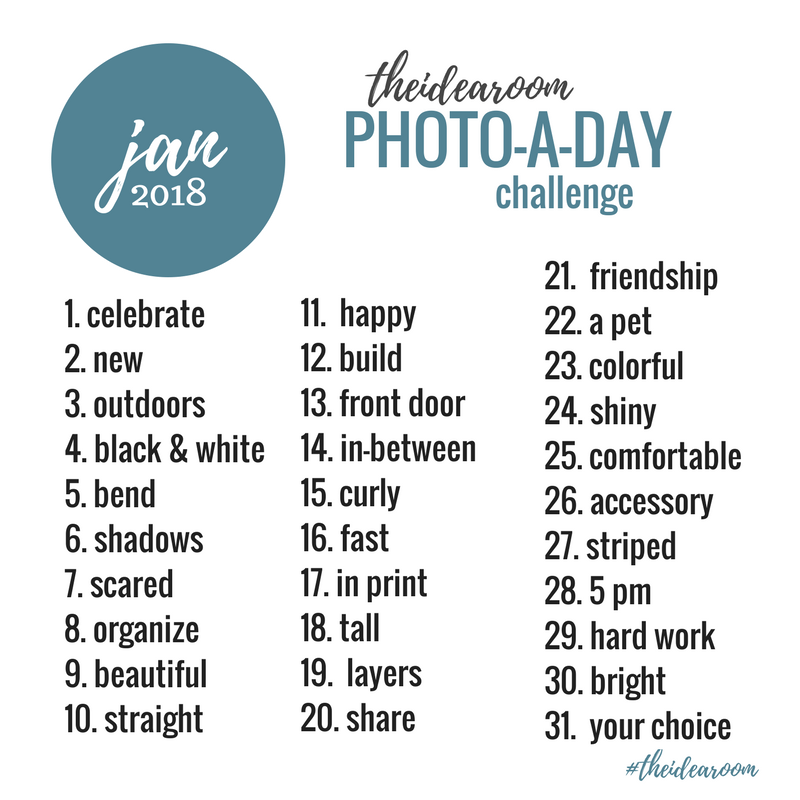 January-Photo-A-Day-Challenge-Prompt-Pictures-Photography